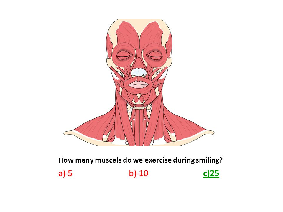 How many muscels do we exercise during smiling? a) 5 b) 10 c)25