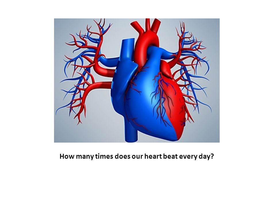 How many times does our heart beat every day