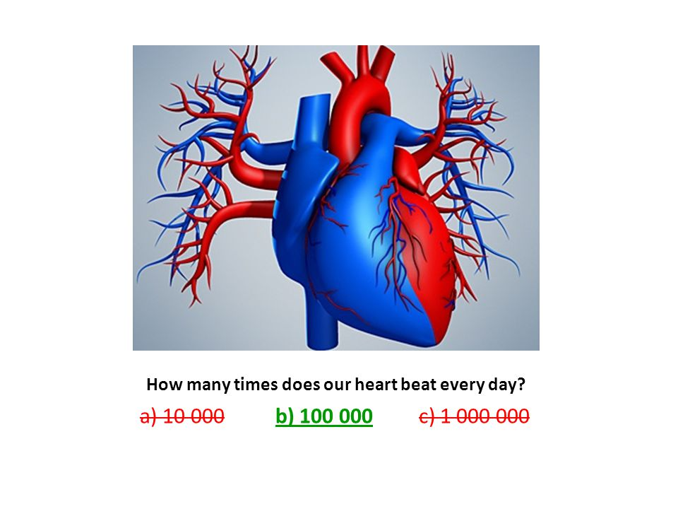 How many times does our heart beat every day a) b) c)