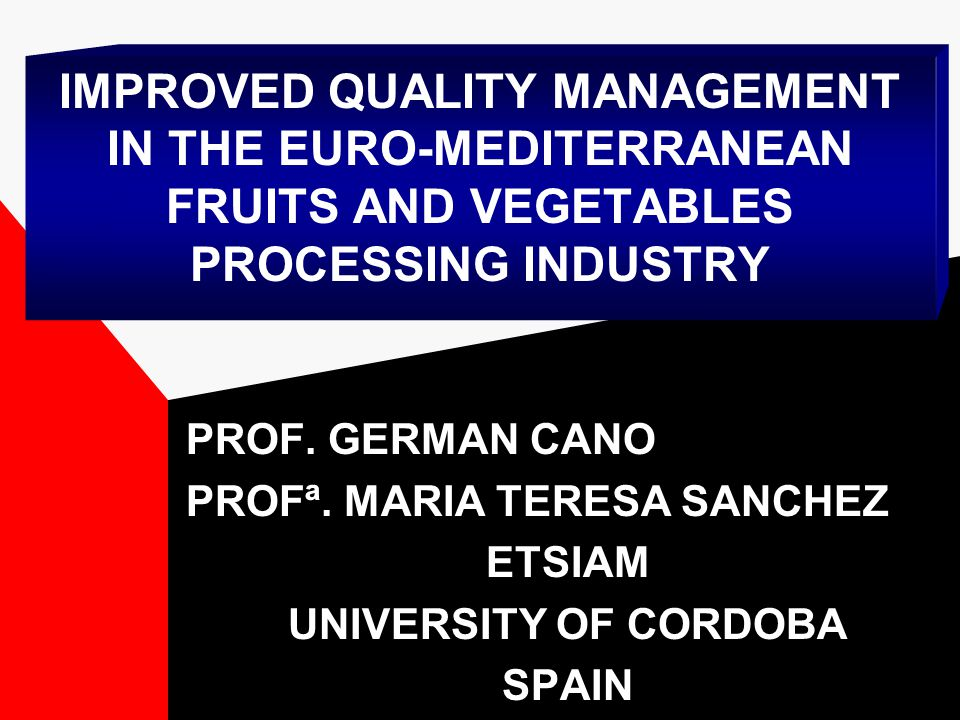 THE EURO-MEDITERRANEAN FOOD-PROCESSING SECTOR: INDUSTRIAL AND TECHNOLOGICAL OUTLOOK PREPARATORY WORKSHOP October, 2001 Cordoba, Spain Financial support by the Commission of the European Union under MEDA programme is acknowledged (Thematic Network ICA3-C5-2000-30004) Profª.