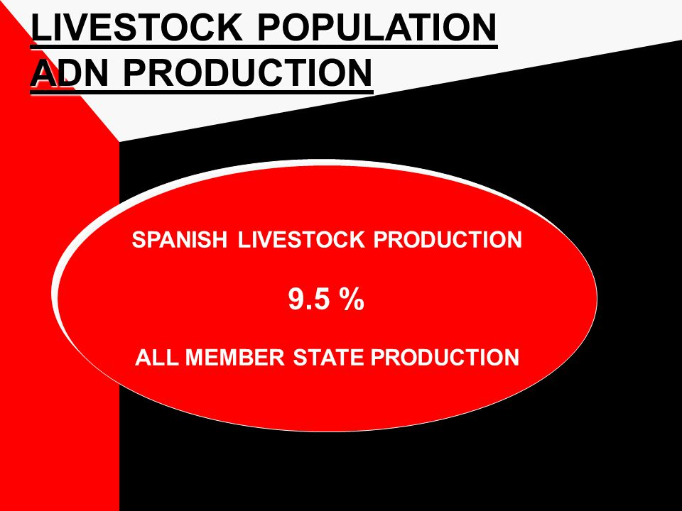 LIVESTOCK POPULATION ADN PRODUCTION SPANISH LIVESTOCK PRODUCTION 9.5 % ALL MEMBER STATE PRODUCTION