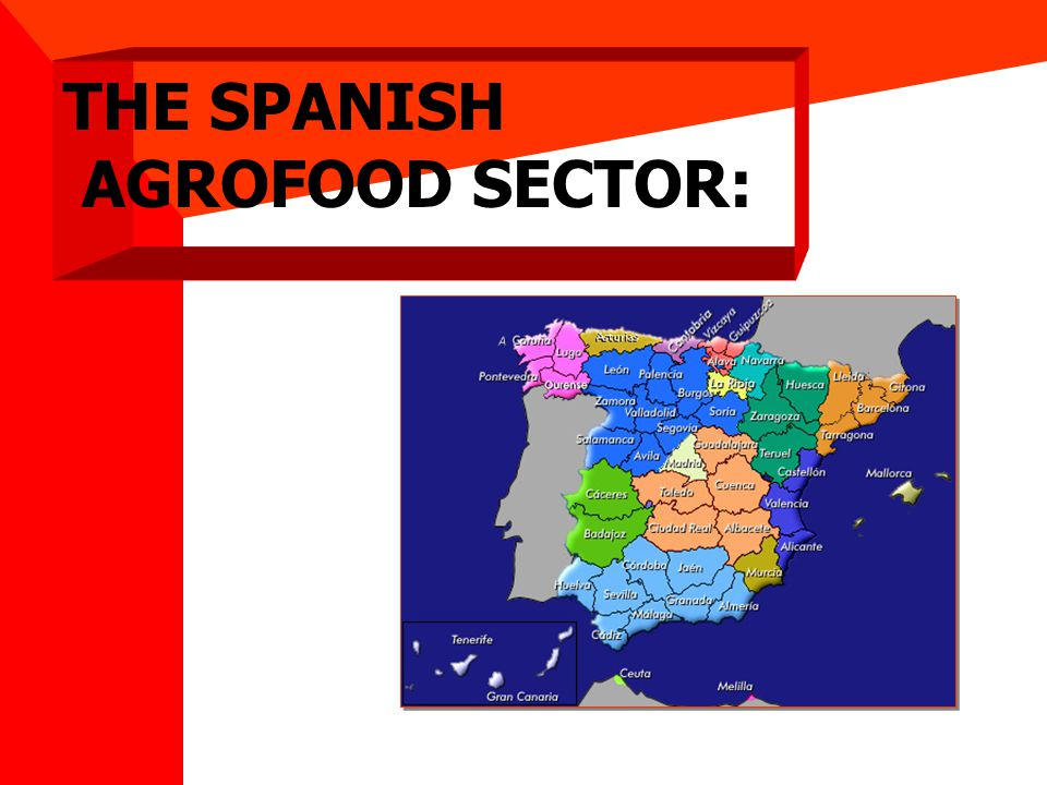 Source: The Spanish Agrofood Sector: Facts and Figures.