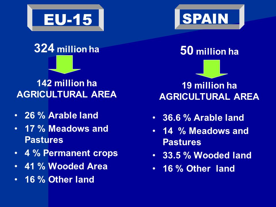 26 % Arable land 17 % Meadows and Pastures 4 % Permanent crops 41 % Wooded Area 16 % Other land 36.6 % Arable land 14 % Meadows and Pastures 33.5 % Wooded land 16 % Other land EU-15 SPAIN 324 million ha 142 million ha AGRICULTURAL AREA 50 million ha 19 million ha AGRICULTURAL AREA
