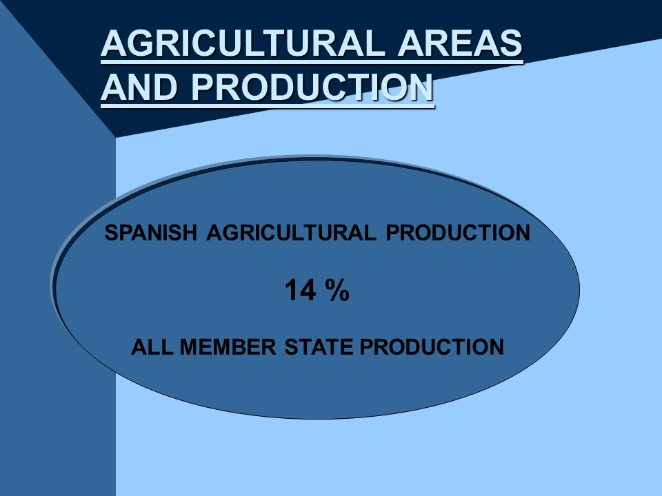 AGRICULTURAL AREAS AND PRODUCTION SPANISH AGRICULTURAL PRODUCTION 14 % ALL MEMBER STATE PRODUCTION