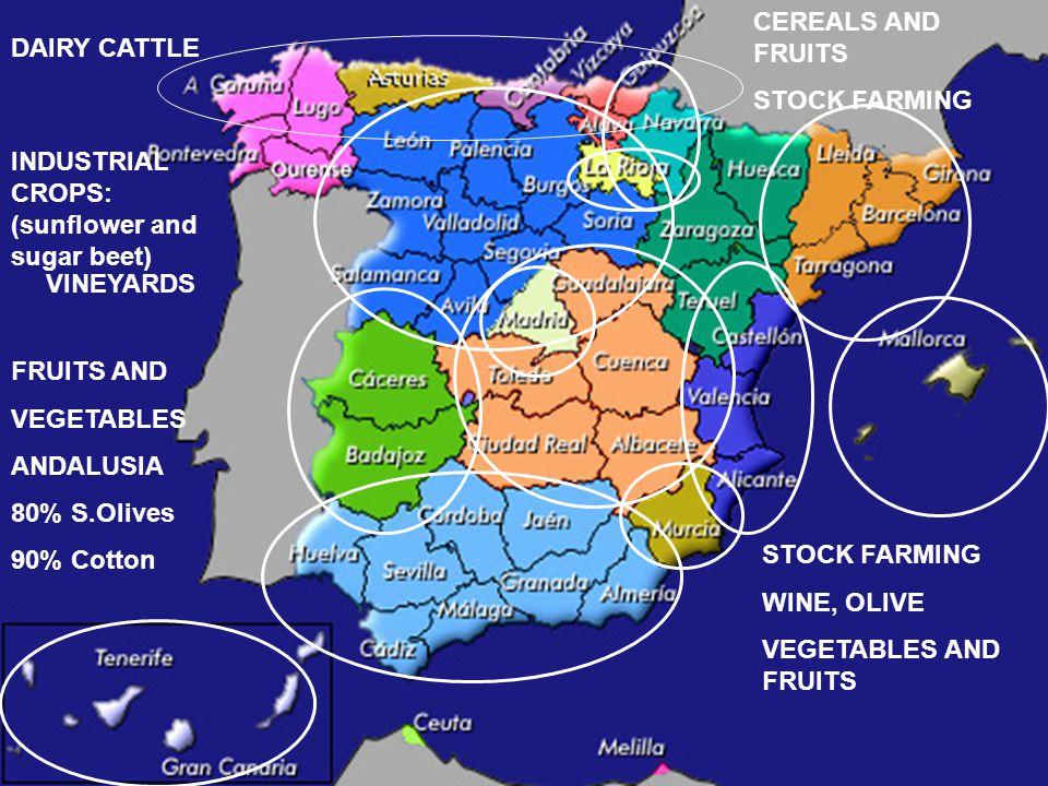 FINAL AGRICULTURE PRODUCTION STRUCTURE European Union versus SPAIN