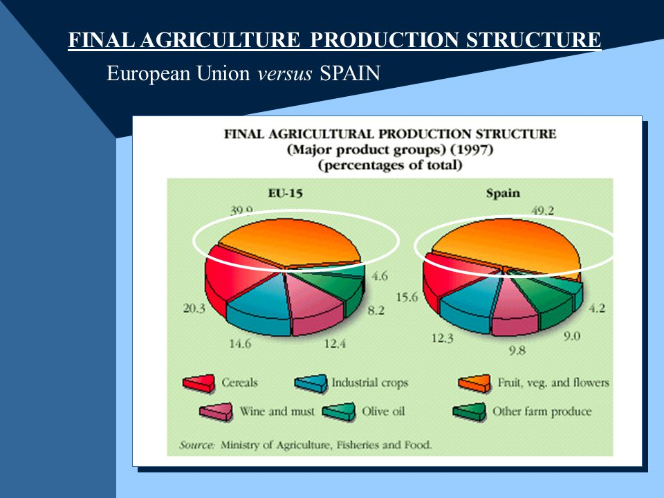 FINAL AGRICULTURE PRODUCTION STRUCTURE European Union versus SPAIN