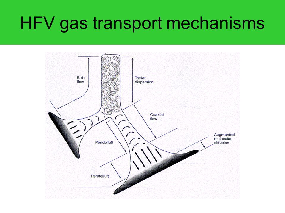HFV gas transport mechanisms