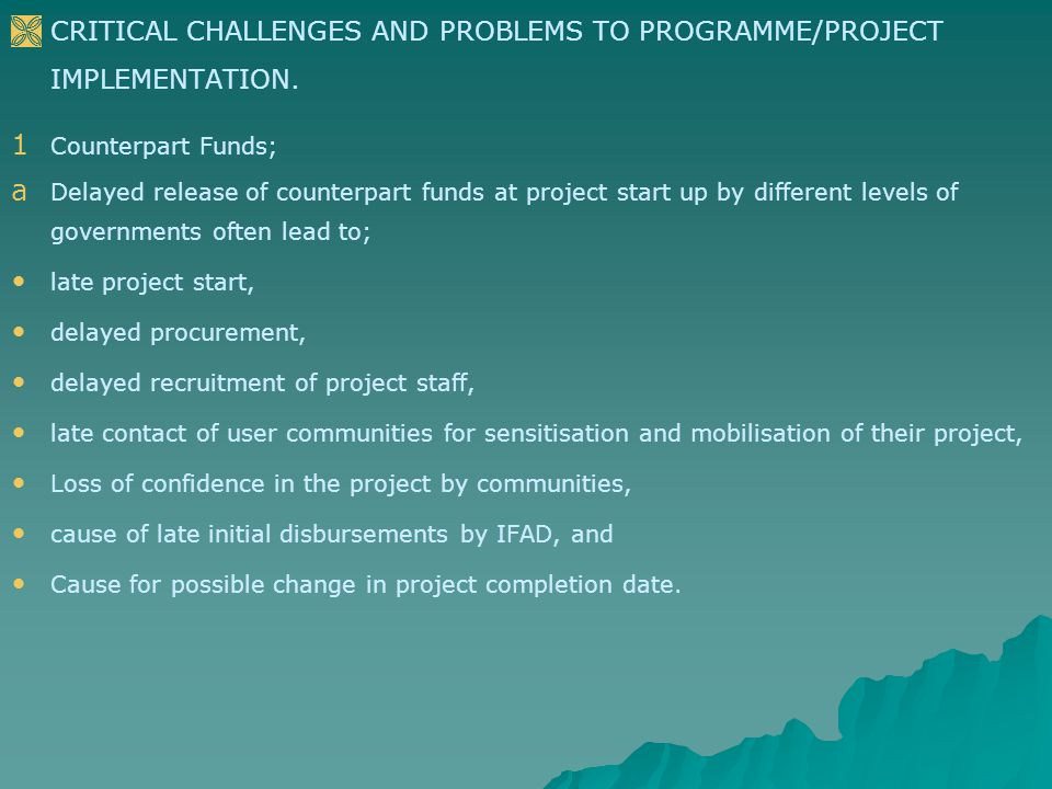   CRITICAL CHALLENGES AND PROBLEMS TO PROGRAMME/PROJECT IMPLEMENTATION.