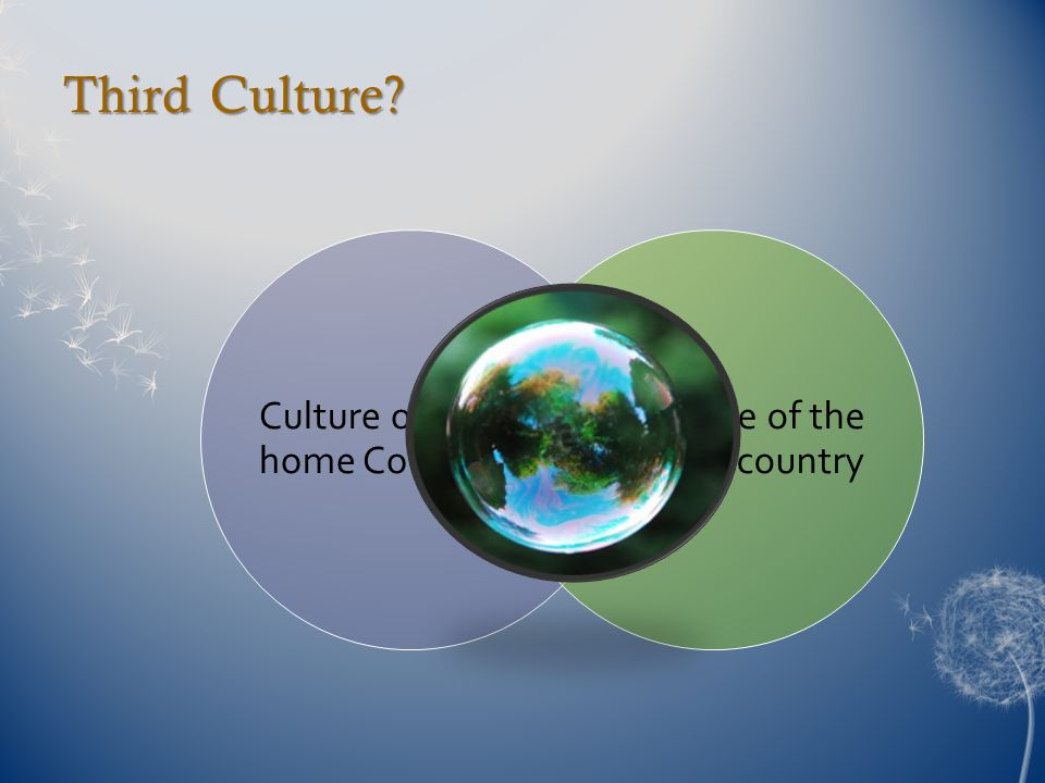 Third Culture? Culture of the home Country Culture of the host country