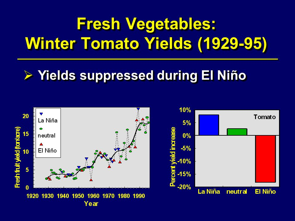 Fresh Vegetables: Winter Tomato Yields (1929-95)  Yields suppressed during El Niño