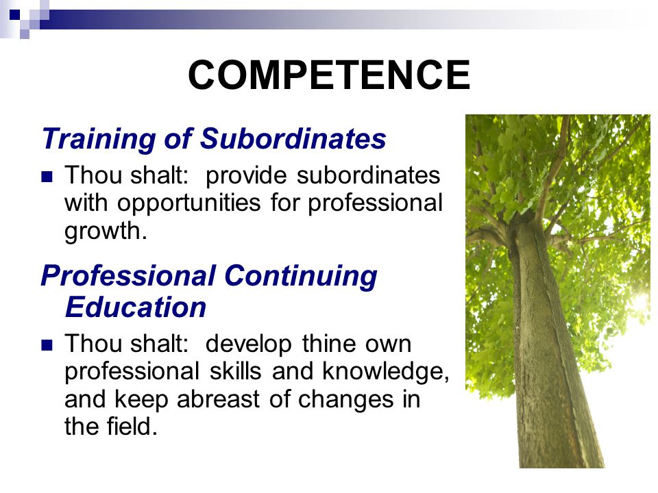 COMPETENCE Training of Subordinates Thou shalt: provide subordinates with opportunities for professional growth.