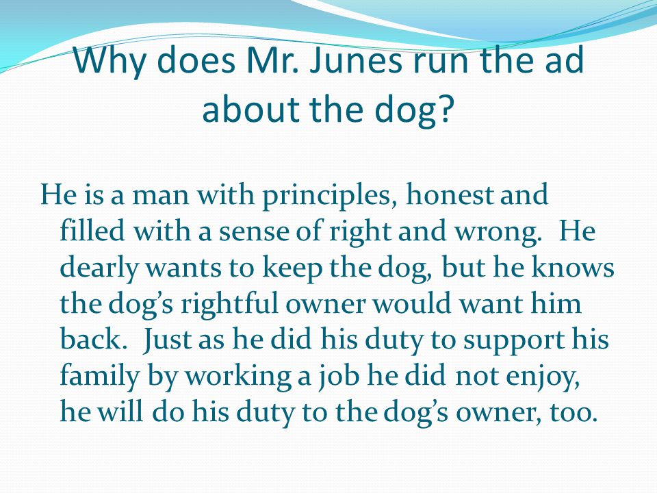 Why does Mr. Junes run the ad about the dog.