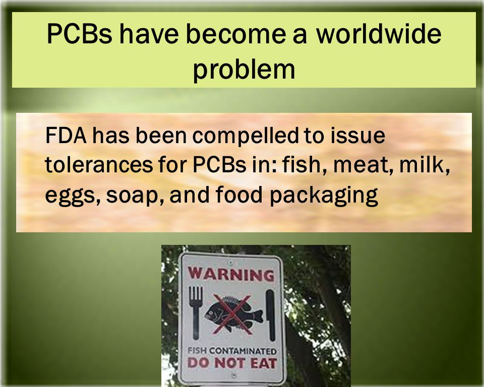 FDA has been compelled to issue tolerances for PCBs in: f ish, meat, milk, eggs, soap, and food packaging PCBs have become a worldwide problem
