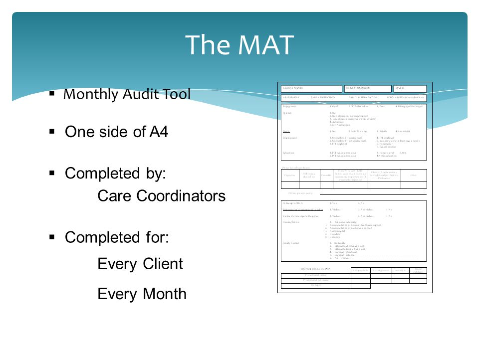 The MAT  Monthly Audit Tool  Completed by: Care Coordinators  Completed for: Every Client Every Month  One side of A4