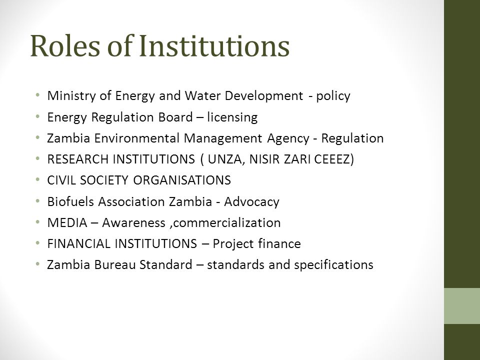 Roles of Institutions Ministry of Energy and Water Development - policy Energy Regulation Board – licensing Zambia Environmental Management Agency - Regulation RESEARCH INSTITUTIONS ( UNZA, NISIR ZARI CEEEZ) CIVIL SOCIETY ORGANISATIONS Biofuels Association Zambia - Advocacy MEDIA – Awareness,commercialization FINANCIAL INSTITUTIONS – Project finance Zambia Bureau Standard – standards and specifications
