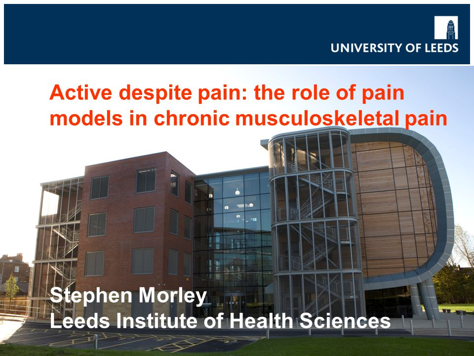Active despite pain: the role of pain models in chronic musculoskeletal pain Stephen Morley Leeds Institute of Health Sciences