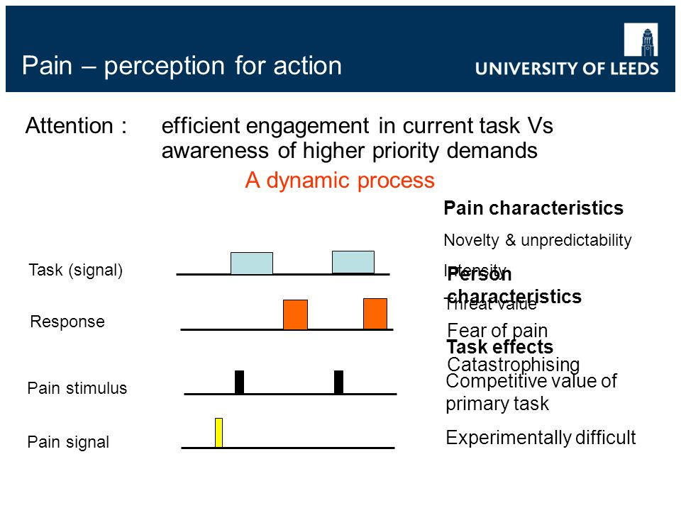 Pain – perception for action Attention : efficient engagement in current task Vs awareness of higher priority demands A dynamic process Response Pain stimulus Pain signal Task (signal) Pain characteristics Novelty & unpredictability Intensity Threat value Person characteristics Fear of pain Catastrophising Task effects Competitive value of primary task Experimentally difficult