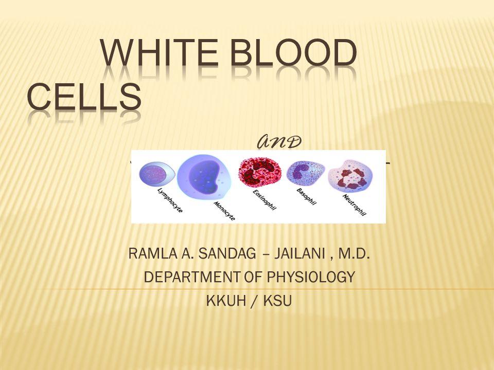 RAMLA A. SANDAG – JAILANI, M.D. DEPARTMENT OF PHYSIOLOGY KKUH / KSU