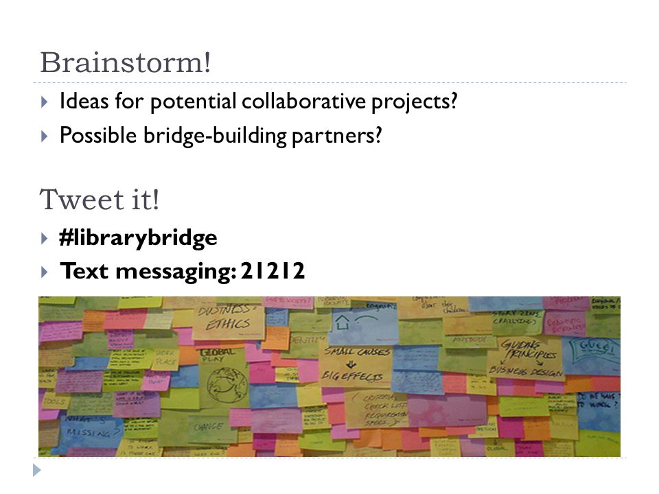  Ideas for potential collaborative projects.  Possible bridge-building partners.
