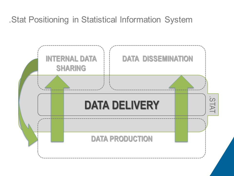 .Stat Positioning in Statistical Information System DATA DELIVERY INTERNAL DATA SHARING DATA DISSEMINATION DATA PRODUCTION.STAT