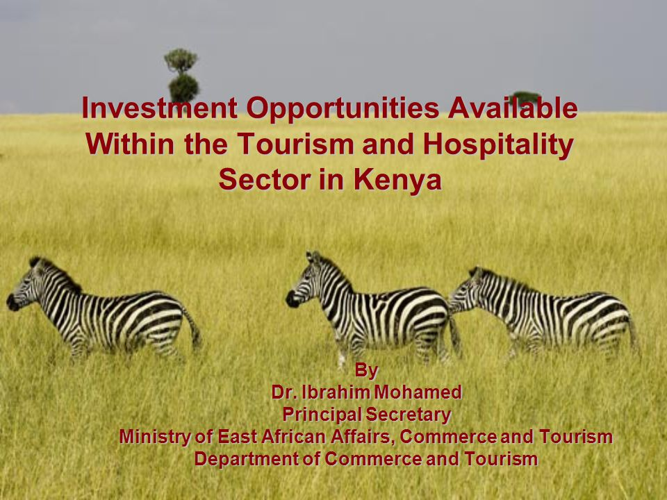 Content Background Investment in New Tourist Attractions Investment in Travel Facilitation Investment in Accommodation Facilities Investment in Food and Beverage Services Investment in Tourism and Hospitality Training Financing Models Investment Incentives Reasons to Invest in Kenya's tourism Sector Tourism Support Infrastructure