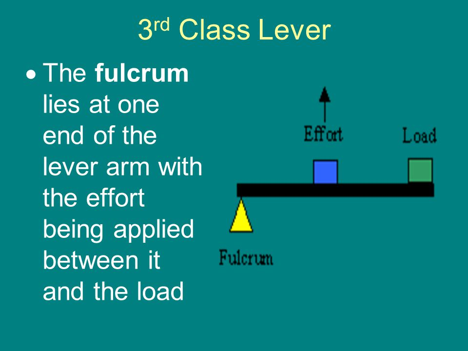 3 rd Class Lever  The fulcrum lies at one end of the lever arm with the effort being applied between it and the load