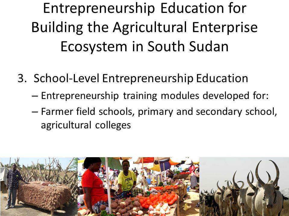 Entrepreneurship Education for Building the Agricultural Enterprise Ecosystem in South Sudan 3.School-Level Entrepreneurship Education – Entrepreneurs