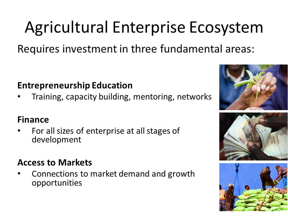 Agricultural Enterprise Ecosystem Entrepreneurship Education Training, capacity building, mentoring, networks Finance For all sizes of enterprise at a