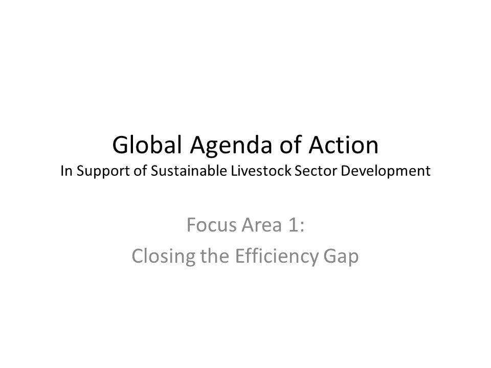 Global Agenda of Action In Support of Sustainable Livestock Sector Development Focus Area 1: Closing the Efficiency Gap