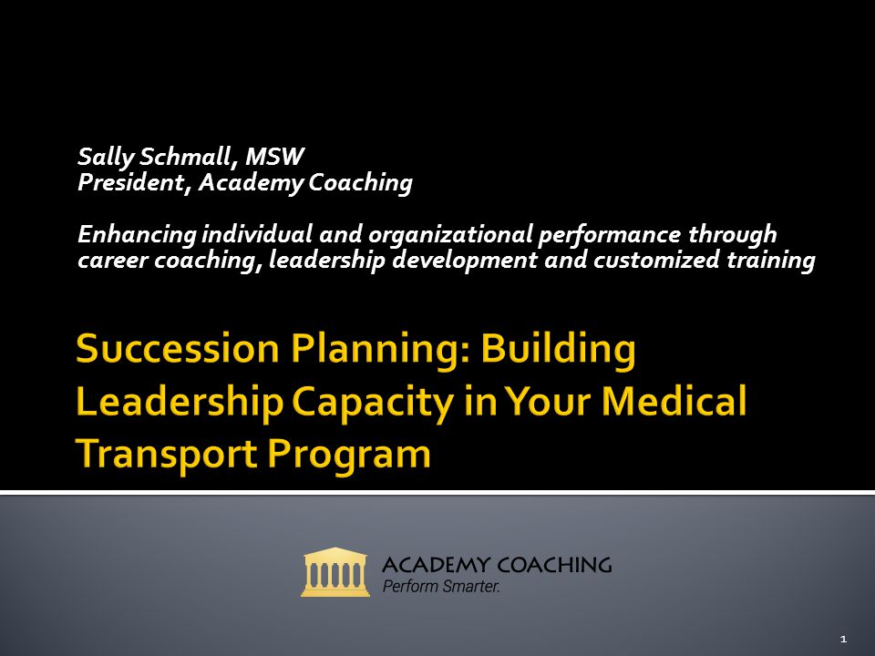 Sally Schmall, MSW President, Academy Coaching Enhancing individual and organizational performance through career coaching, leadership development and customized training 1