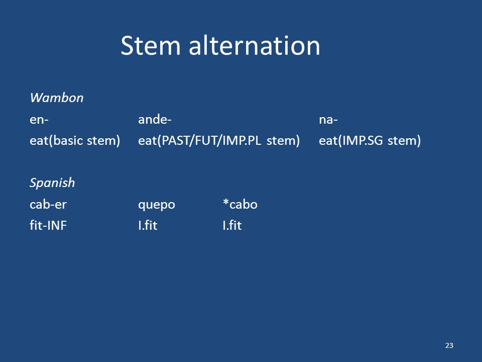 Stem alternation Wambon en-ande-na- eat(basic stem)eat(PAST/FUT/IMP.PL stem)eat(IMP.SG stem) Spanish cab-erquepo*cabo fit-INFI.fitI.fit 23