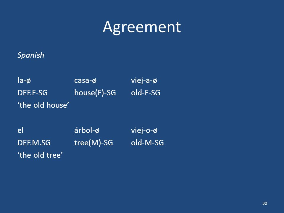 Agreement Spanish la-øcasa-øviej-a-ø DEF.F-SGhouse(F)-SGold-F-SG 'the old house' elárbol-øviej-o-ø DEF.M.SGtree(M)-SGold-M-SG 'the old tree' 30