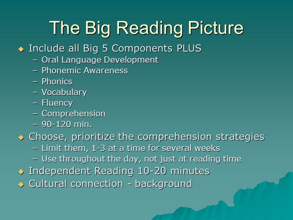 The Big Reading Picture  Include all Big 5 Components PLUS –Oral Language Development –Phonemic Awareness –Phonics –Vocabulary –Fluency –Comprehensio
