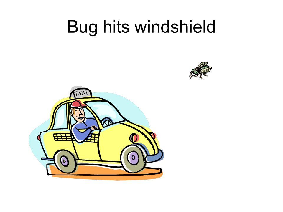 Bug hits windshield
