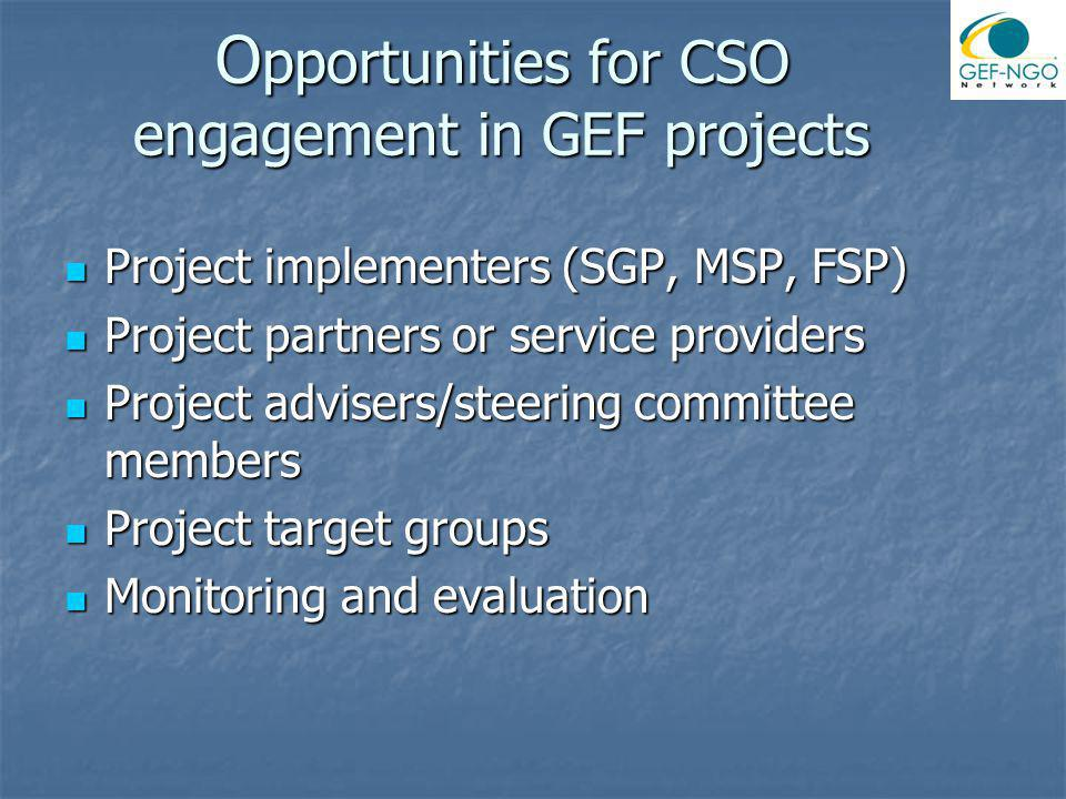 GEF NGO Network Established in 1995 to facilitate CSO input to GEF Governance Established in 1995 to facilitate CSO input to GEF Governance More than 500 active members in 16 regions More than 500 active members in 16 regions Facilitate Civil society input to GEF policy making and implementation.
