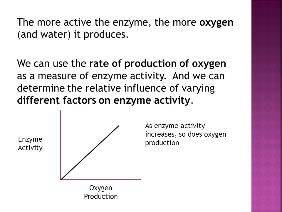 The more active the enzyme, the more oxygen (and water) it produces.