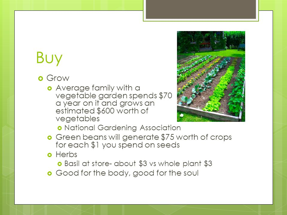 Buy  Grow  Average family with a vegetable garden spends $70 a year on it and grows an estimated $600 worth of vegetables  National Gardening Association  Green beans will generate $75 worth of crops for each $1 you spend on seeds  Herbs  Basil at store- about $3 vs whole plant $3  Good for the body, good for the soul