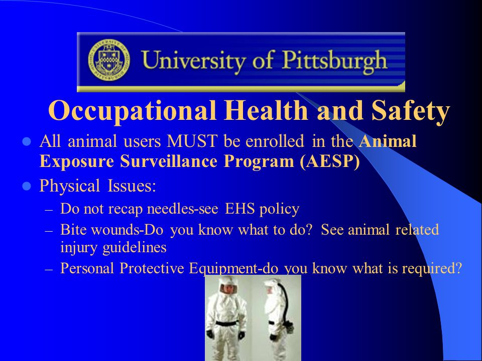 Occupational Health and Safety All animal users MUST be enrolled in the Animal Exposure Surveillance Program (AESP) Physical Issues: – Do not recap needles-see EHS policy – Bite wounds-Do you know what to do.