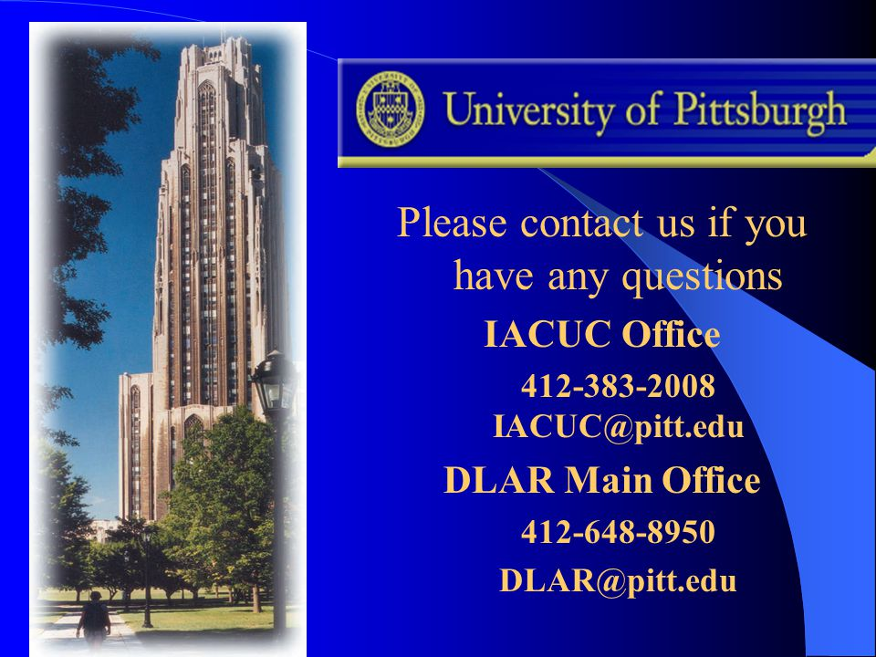 Please contact us if you have any questions IACUC Office 412-383-2008 IACUC@pitt.edu DLAR Main Office 412-648-8950 DLAR@pitt.edu