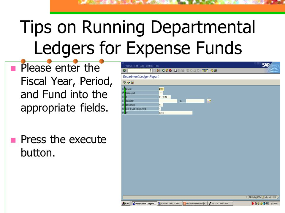 Tips on Running Departmental Ledgers for Expense Funds Please enter the Fiscal Year, Period, and Fund into the appropriate fields.