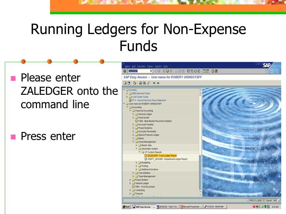 Running Ledgers for Non-Expense Funds Please enter the Fiscal Year, Period, and Fund.