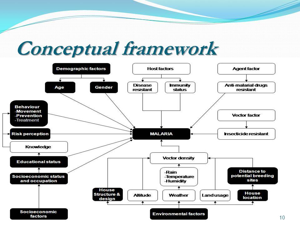 Conceptual framework 10
