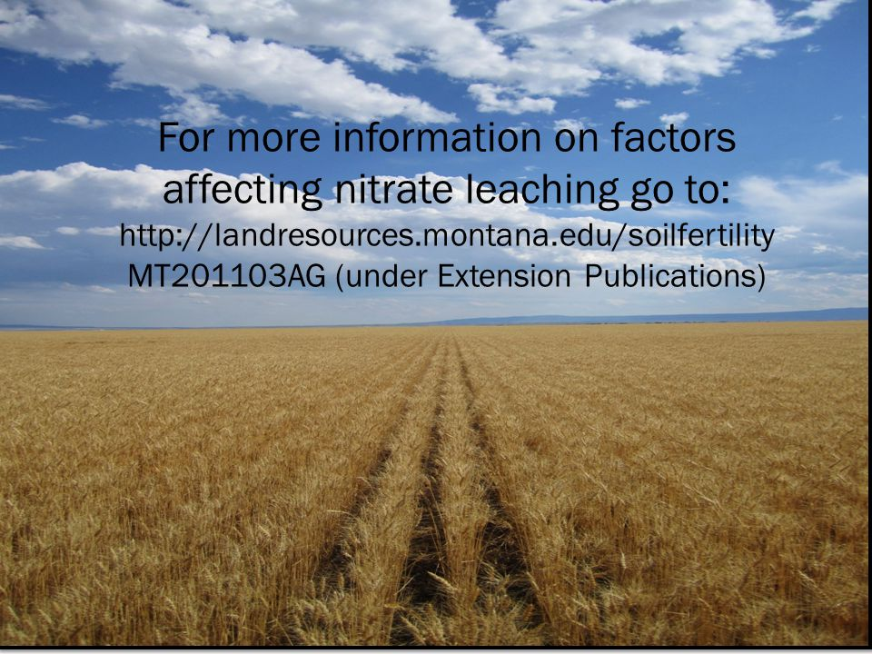 For more information on factors affecting nitrate leaching go to: http://landresources.montana.edu/soilfertility MT201103AG (under Extension Publications)