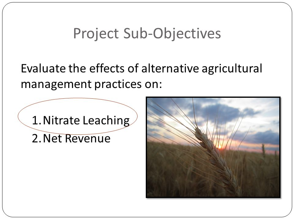 Project Sub-Objectives Evaluate the effects of alternative agricultural management practices on: 1.Nitrate Leaching 2.Net Revenue