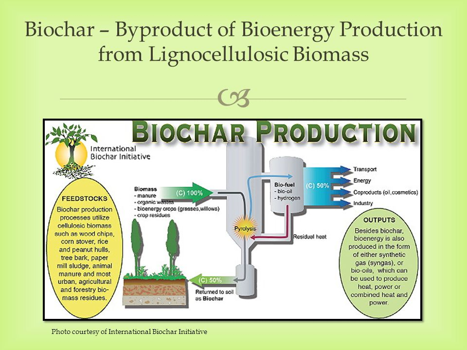  Biochar – Byproduct of Bioenergy Production from Lignocellulosic Biomass Photo courtesy of International Biochar Initiative