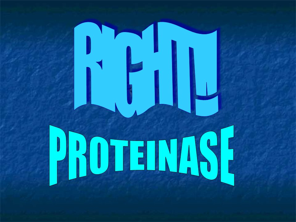 """QUIZ - QUESTION 4 NOPE: think about """"lactase"""" and """"amylase"""" PROTEINOSE PROTEINASEPROTEINZYME PROTEINATION"""