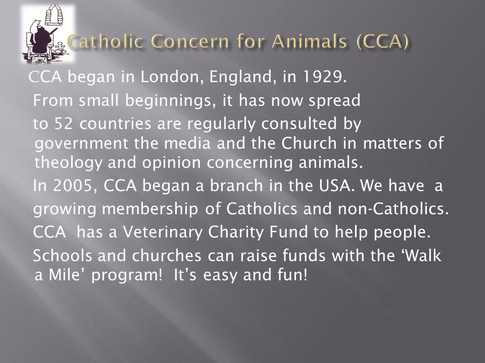 Catholic Concern for Animals Catholic Concern for Animals www.catholic-animals.org
