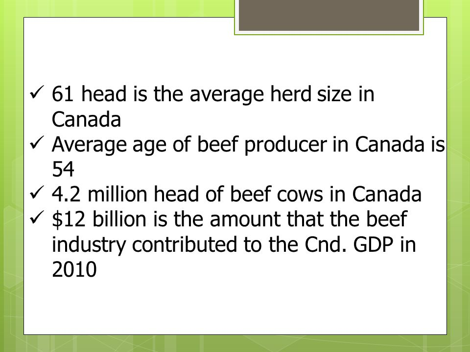 61 head is the average herd size in Canada Average age of beef producer in Canada is 54 4.2 million head of beef cows in Canada $12 billion is the amo