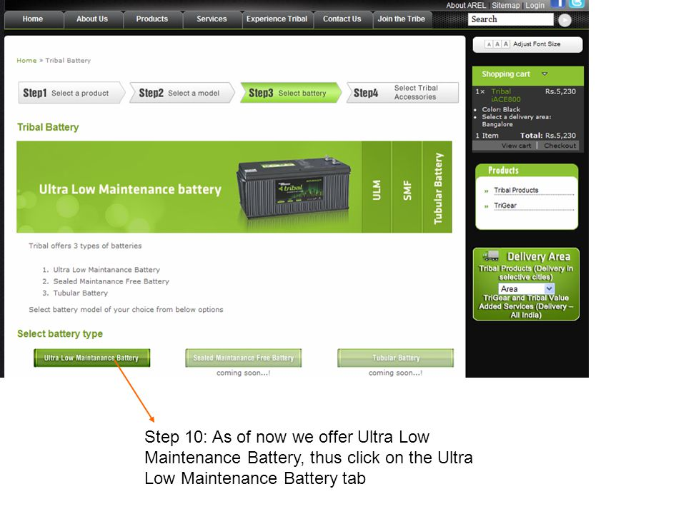 Step 10: As of now we offer Ultra Low Maintenance Battery, thus click on the Ultra Low Maintenance Battery tab