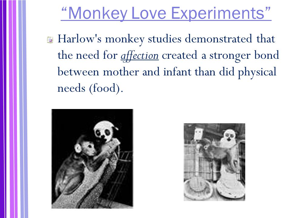 Monkey Love Experiments Harlow s monkey studies demonstrated that the need for affection created a stronger bond between mother and infant than did physical needs (food).